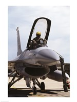 U.S. Air Force  F-16 Falcon Jet Fighter - various sizes