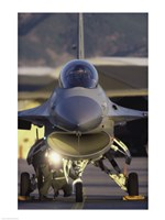 General Dynamics F-16 Falcon Jet Fighter Nose - various sizes