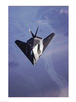 F-117 Stealth Fighter U.S. Air Force - various sizes
