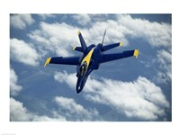 Blue Angels F-18 Hornet Fine Art Print
