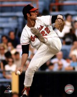 Jim Palmer Action Fine Art Print