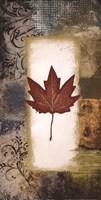 "Single Leaf III by Michael Marcon - 12"" x 24"""