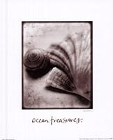 Ocean Treasures Framed Print