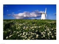 Ballycopeland Windmill, Millisle, Northern Ireland Fine Art Print