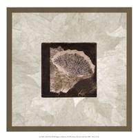 Ginko Leaf Fine Art Print