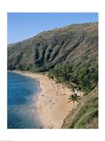 High angle view of a bay, Hanauma Bay, Oahu, Hawaii, USA - various sizes