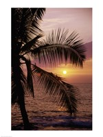 Kohala Coast at sunset, The Big Island, Hawaii, USA Fine Art Print