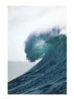 Close-up of an ocean wave, Waimea Bay, Oahu, Hawaii, USA Fine Art Print