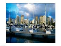 Sailboats docked in a harbor, Ala Wai Marina, Waikiki Beach, Honolulu, Oahu, Hawaii, USA - various sizes - $29.99