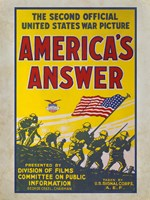 America's Answer - various sizes - $29.99