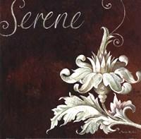 Serene Fine Art Print