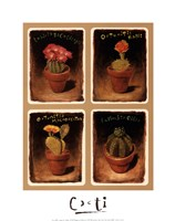Cacti Fine Art Print