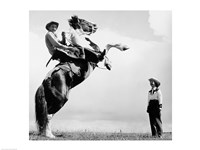 Low angle view of a cowboy riding a bucking horse - various sizes