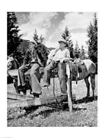 Teenage cowboys sitting on rail fence - various sizes