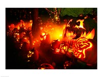 Jack o' lanterns lit up Roger Williams Park Zoo, RI Fine Art Print