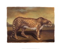 "Cheetah by Denise Crawford - 20"" x 16"", FulcrumGallery.com brand"