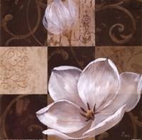 Southern Garden II Fine Art Print