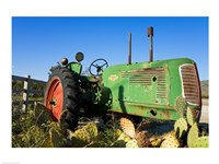 Abandoned tractor in a field, Temecula, Wine Country, California, USA - various sizes