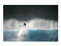 Dolphin breaching in the sea - various sizes