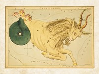 Capricornus Zodiac Sign Fine Art Print