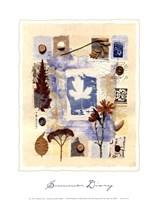 Summer Diary Fine Art Print