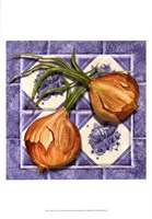 """Onion Tile by Abby White - 13"""" x 19"""""""