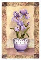 Spring Iris Fine Art Print
