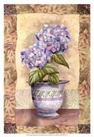 Spring Hydrangea Fine Art Print