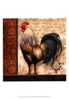 French Rooster I Fine Art Print