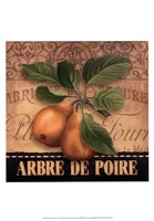 French Pears Fine Art Print