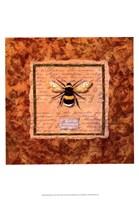"""13"""" x 19"""" Bee Wasp"""