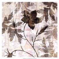 """Wallflower V by James Burghardt - 17"""" x 17"""""""