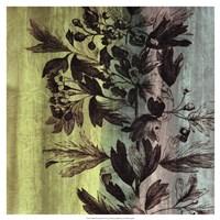 "Painted Botanical III by John Butler - 19"" x 19"""