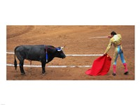 Bull and Matador Stand Off Fine Art Print
