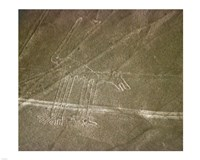 Nazca Lines Dog - various sizes
