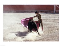 Matador fighting with a bull, Spain Fine Art Print