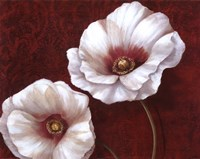 "Prized Blooms II by Nan - 28"" x 22"""