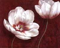 "Prized Blooms I by Nan - 28"" x 22"""