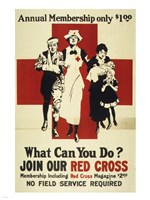 Join Our Red Cross Annual Membership Fine Art Print