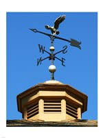 Weathervane Fine Art Print