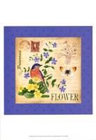 Blooming Garden I Fine Art Print