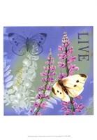 Butterflies Inspire I Fine Art Print