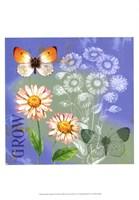 Butterflies Inspire III Fine Art Print