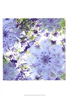 "Abstract Pop III by Ricki Mountain - 13"" x 19"""