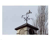 Weathervane on Damerham Village Hall Fine Art Print