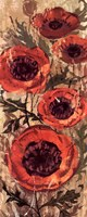 "Floral Frenzy Red I by Alan Hopfensperger - 8"" x 20"""