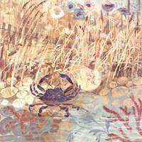 Floral Frenzy Coastal I Fine Art Print