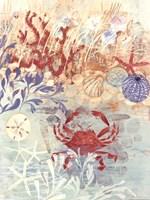 Floral Frenzy Coastal IV Fine Art Print