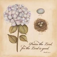 "Praise The Lord by Stephanie Marrott - 12"" x 12"""