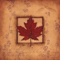 "Maple Leaf by Stephanie Marrott - 12"" x 12"", FulcrumGallery.com brand"